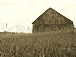 The Old Barn - Sepia by gwalcheved