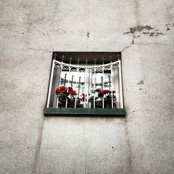 The Window 1 by chegali