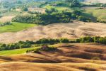 Montepulciano, view on rustic landscape, Tuscany by JPawlak