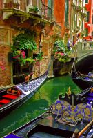 Streets of Venice - Third Edition by Moonbird9