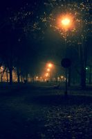Midnight in park by Maxikq