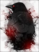 Crow by Silver-Noctis