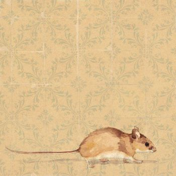 Mouse by semily