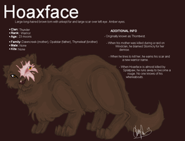 Hoaxface by Shadowgaze