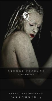 Package - Grunge - 4 by resurgere