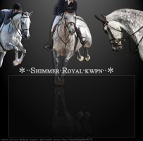 Shimmer Royal KWPNS LAYOUT PREVIEW (c) by prince35H