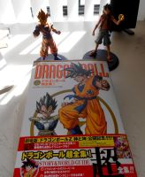 Dragonball Chozenshu vol. 1 by Rayodball