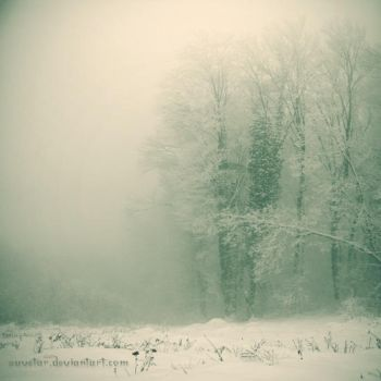 -- cold white light -- by Suvetar