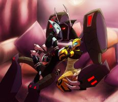 Shockwave's Consorts by JazzTheTiger