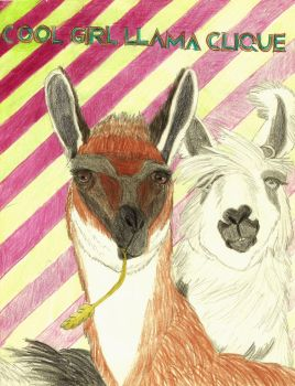 Cool Girl Llama Clique by Nojo-on-the-rojo