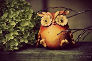 Who is Ready for Autumn? by facelessxfacade