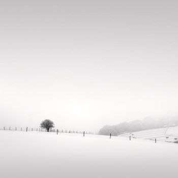 Snow II by Jez92