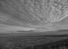 the sky at Elmley by nik79mufc