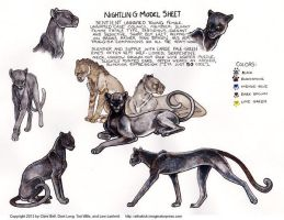 Nightling Model Sheet for Ratha Graphic Novel by rathacat