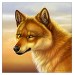 WolfPortrait by Y-Esk