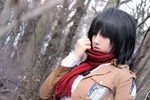 Mikasa Ackerman - withdrawing deep into the hole by Mizukishou