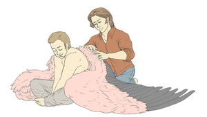 SPN - Grooming by Mieaou