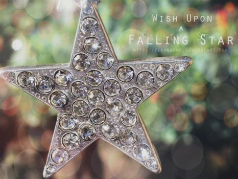 Wish upon a falling Star by FlabnBone
