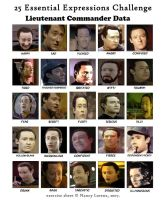 Data Faces Meme completed by vulcangirl14