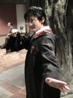 Harry Potter Cosplay by Zombie-Necromancer23