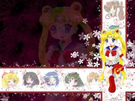 SMCollection3-SailorMoon by starlight-sl