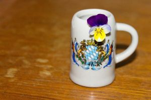 Flower and Coat of Arms by Anonimus79