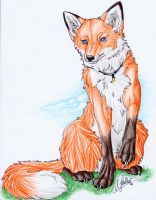 .::Fox::. by WhiteSpiritWolf