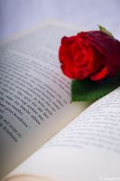 Reading for roses. by Miss-evill