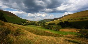 Newlands by scotto