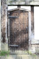 SMD Free Texture 11: Ancient Door by Spicy-Monster