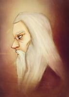 TheFirstBrother: Dumbledore by Capricornicis
