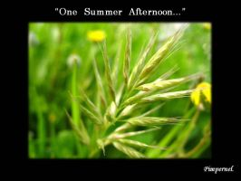 One Summer Afternoon by Pimpernel