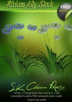 African Lily Stock by SK-DIGIART