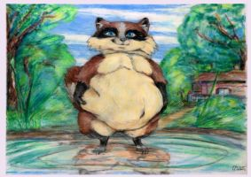 Water pond fat raccoon Girl by SSsilver-c