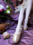 Pointe shoes by Ushi-de-Bray