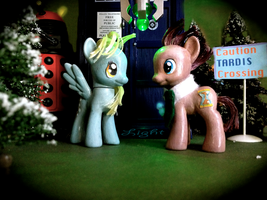 My Little Pony Customs: Doctor and Derpy by LightStudioz