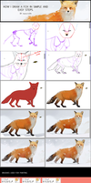 how to draw a fox tutorial by mano-k
