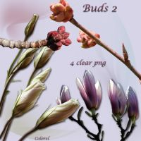 Buds2 by libidules