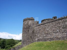 Kidwelly Castle iv by makibird