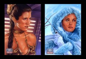 Leia and Padme by roberthendrickson