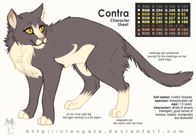 Contra Character Sheet by cleopata