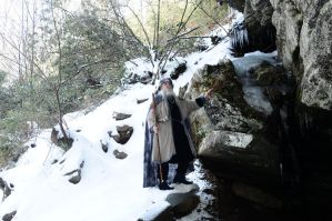 Wizard of Ice 2014-14-02 25 by skydancer-stock