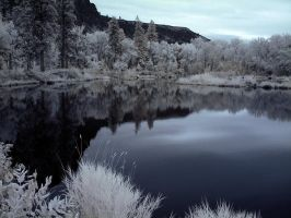 Infrared Pond with a View by La-Vita-a-Bella