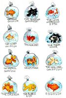 The many types of goldfish. by MiniMushroom