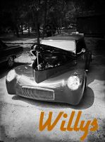 Willy Nice in Black and White by stillestilo
