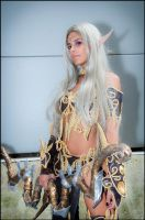 Night elf_2_Romics2012 by ladymisterya