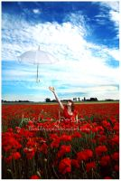 _Ocean of poppies. by Bloddroppe