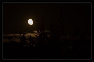 Half Supermoon by deaconfrost78