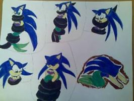 Sonic captured 2 by princessshannon07