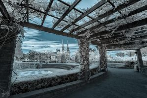 Hyde Park - Infrared by SteveCampbell